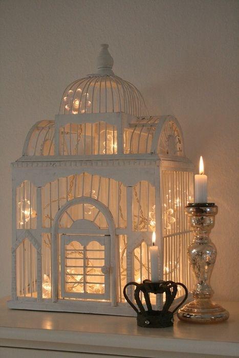 jaula con luces